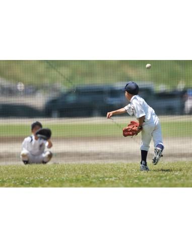 Red Protección Béisbol