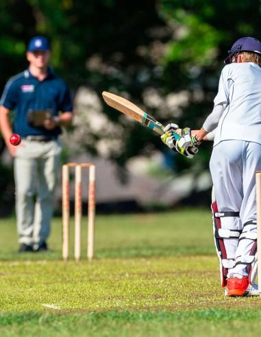 Red Protección Críquet
