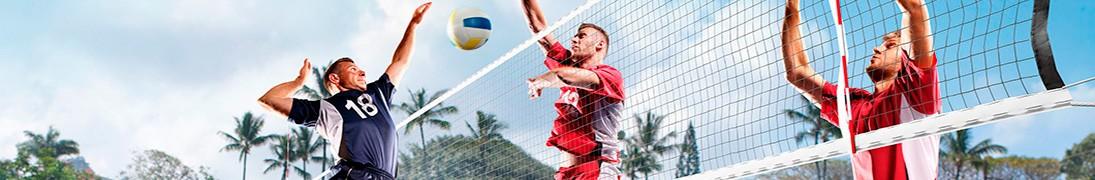 Red Voleibol